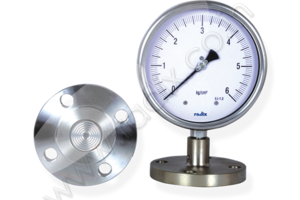 Flanged Sealed Gauge -with Sealed & Flanged Flush Diaphragm gauge