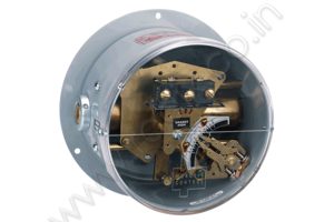 Double Bellows Differential Pressure Switch